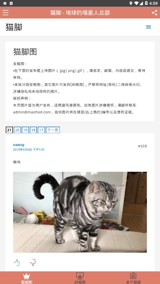 猫脚安卓版